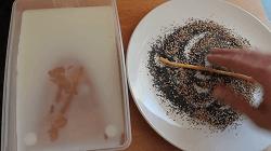 Salzstangen Selber Machen - Schritt 14